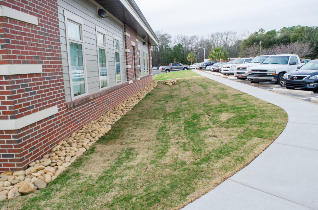 Edgefield County Hospital Grounds Landscaping & Maintenance 11