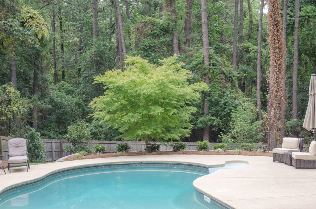 Extensive New Aiken, SC Poolscape Design & Installation 4