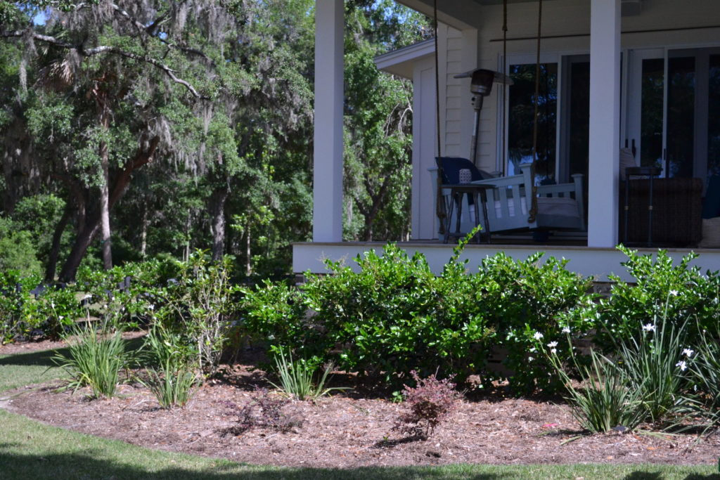 Coastal Landscape Project at Bluffton, SC Estate 4