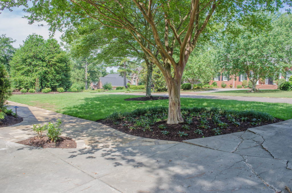 Beautiful Sod, Bed, and Paver Work at This Aiken, SC Property. 8