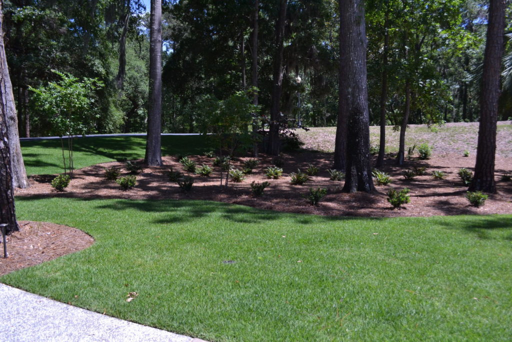 Luscious Landscaping at Stunning New Bluffton, SC Home 13