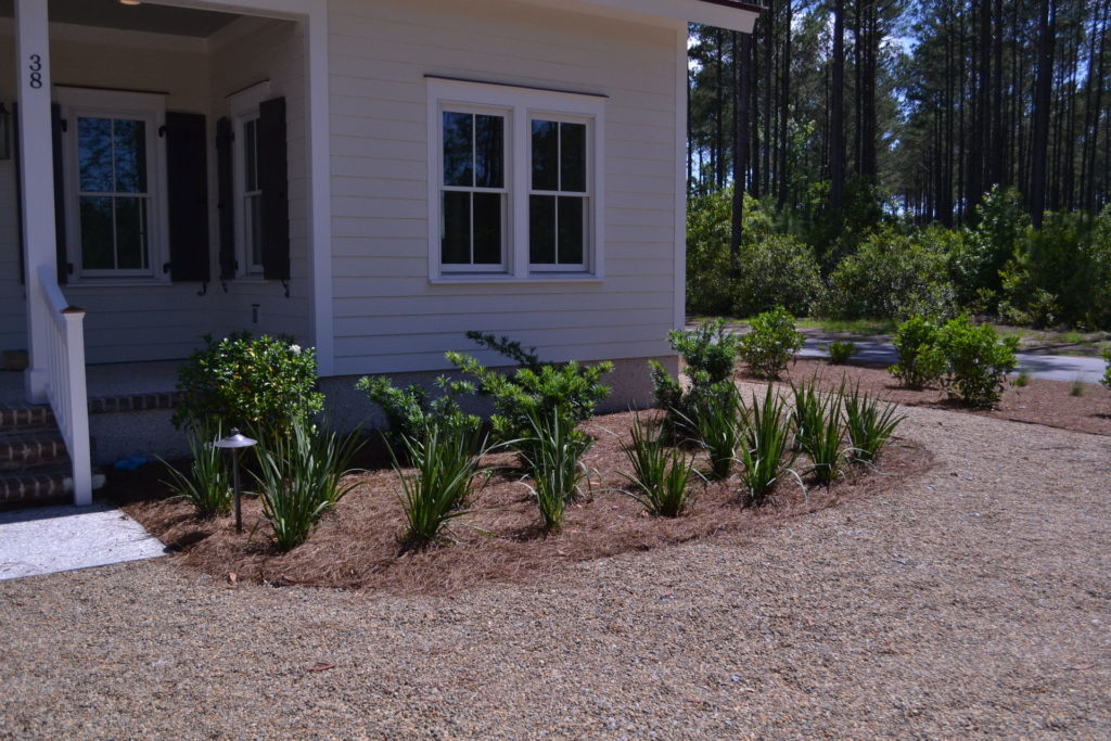 Bluffton, SC Cottage Driveway and Full Yard Landscape 7