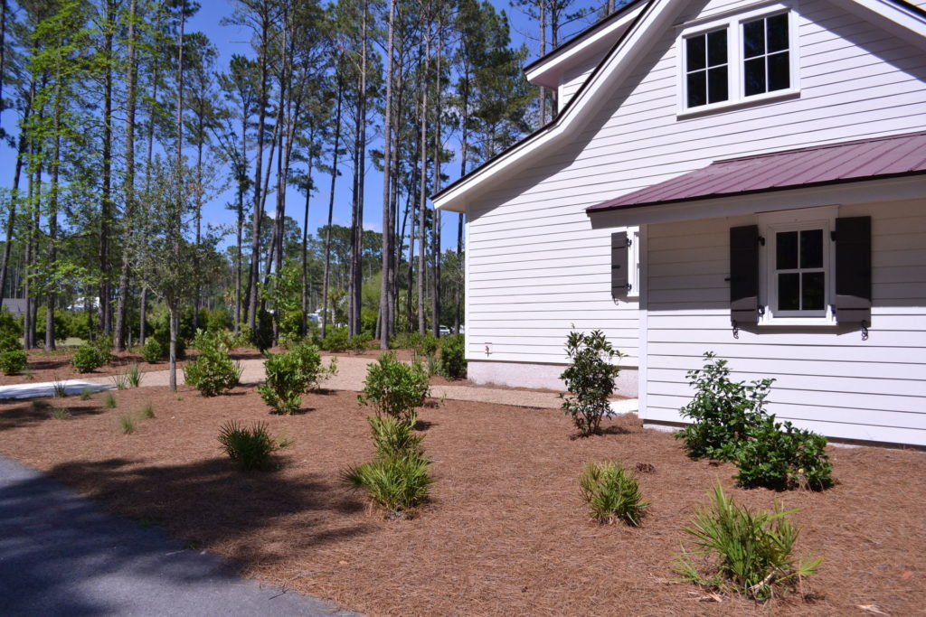 Bluffton, SC Cottage Driveway and Full Yard Landscape 1
