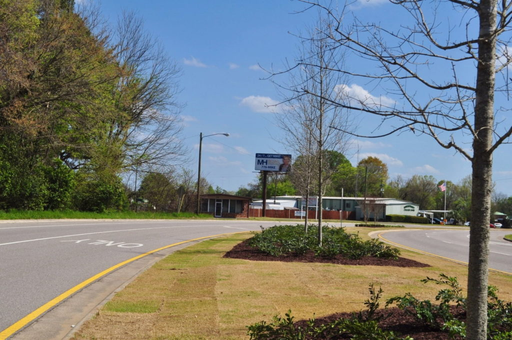 Streetscape & Planting Design Project Along Sand Bar Ferry Road 1