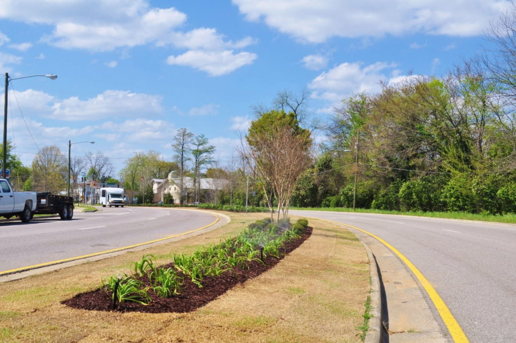 Streetscape & Planting Design Project Along Sand Bar Ferry Road 12