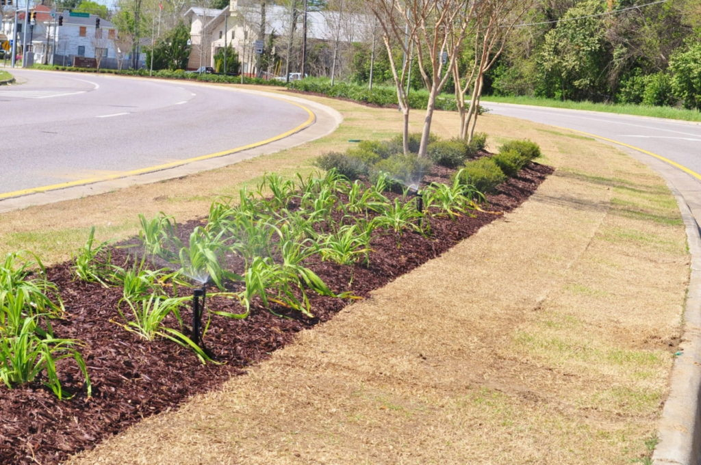 Streetscape & Planting Design Project Along Sand Bar Ferry Road 13
