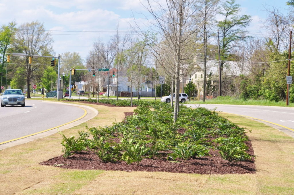 Streetscape & Planting Design Project Along Sand Bar Ferry Road 14