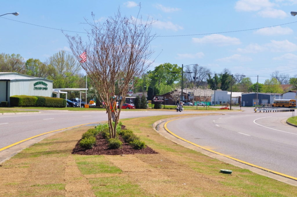 Streetscape & Planting Design Project Along Sand Bar Ferry Road 15