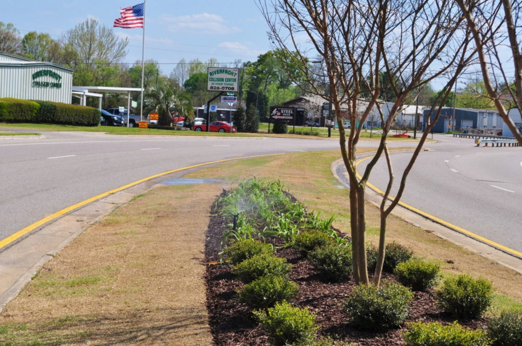 Streetscape & Planting Design Project Along Sand Bar Ferry Road 16
