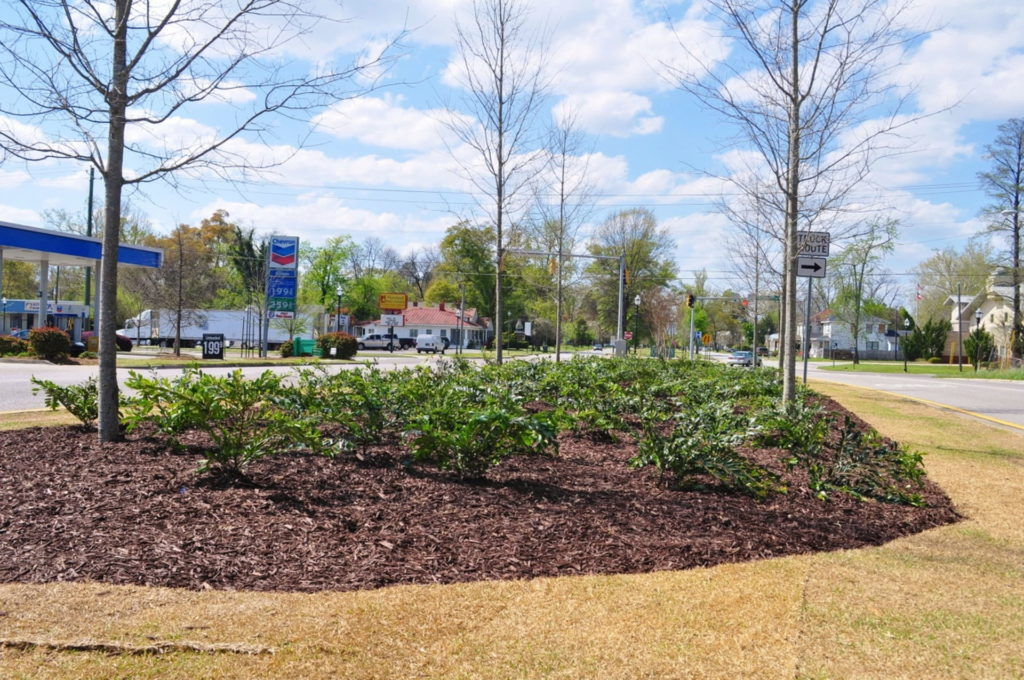 Streetscape & Planting Design Project Along Sand Bar Ferry Road 17