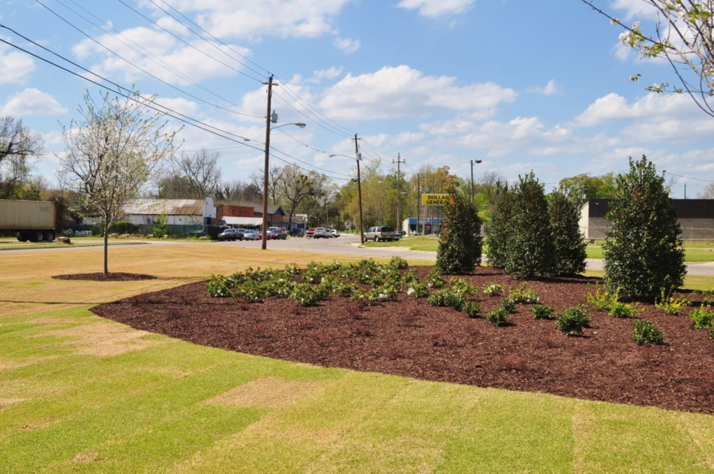 Streetscape & Planting Design Project Along Sand Bar Ferry Road 9