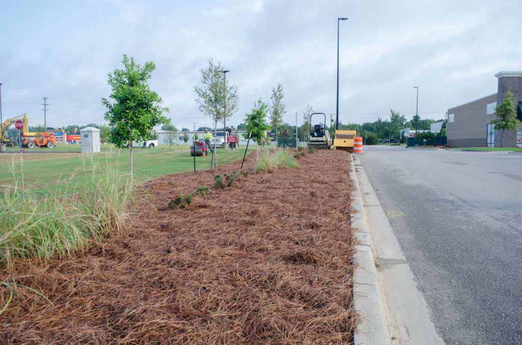 North Augusta, SC Wendy's Franchise Landscaping Project 2