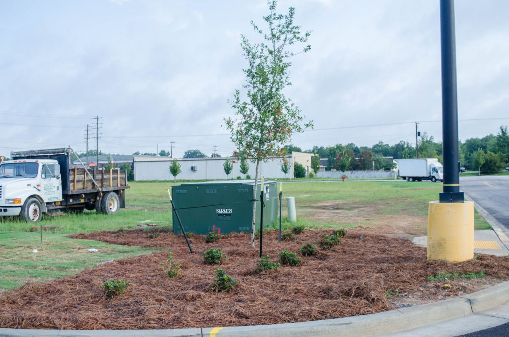 North Augusta, SC Wendy's Franchise Landscaping Project 3
