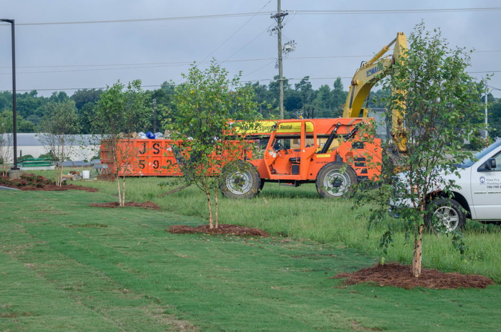 North Augusta, SC Wendy's Franchise Landscaping Project 4