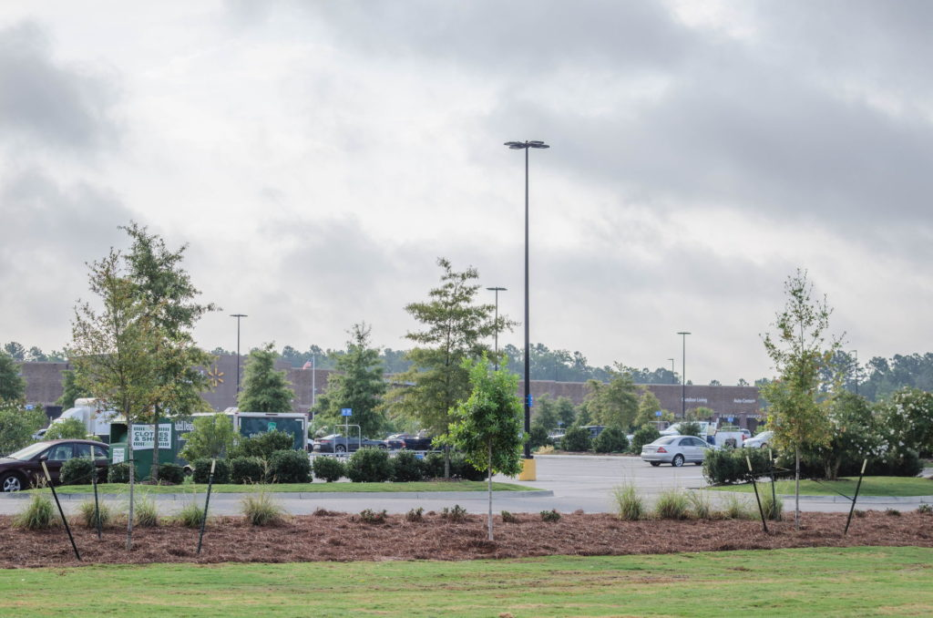 North Augusta, SC Wendy's Franchise Landscaping Project 5