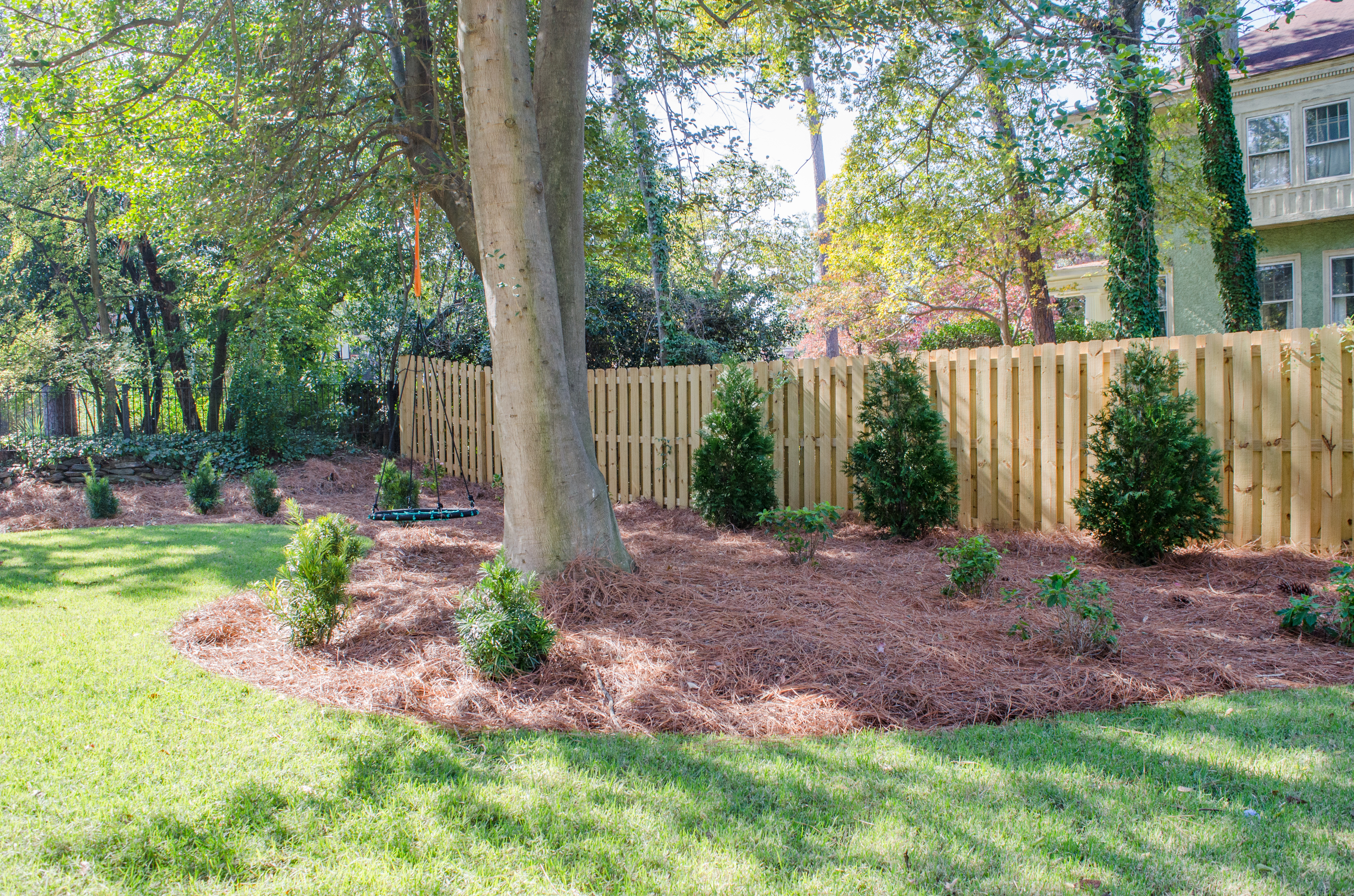 5 Tips for Landscaping Around Trees 3