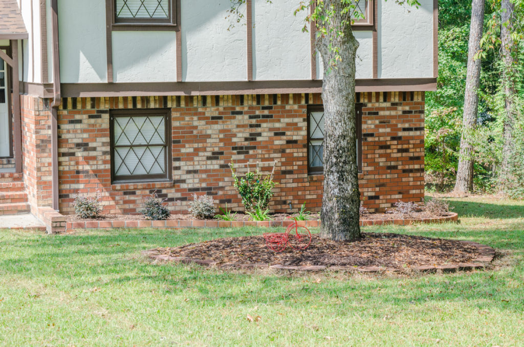 5 Questions to Ask Your Landscaper 1
