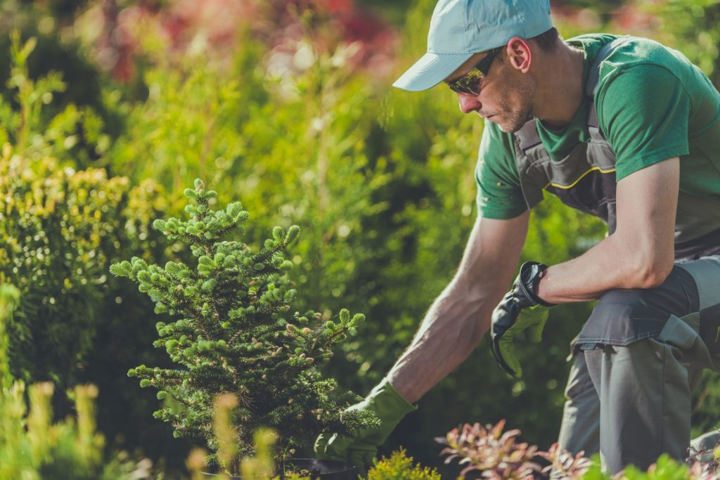 Why Landscaping is an Essential Business 1