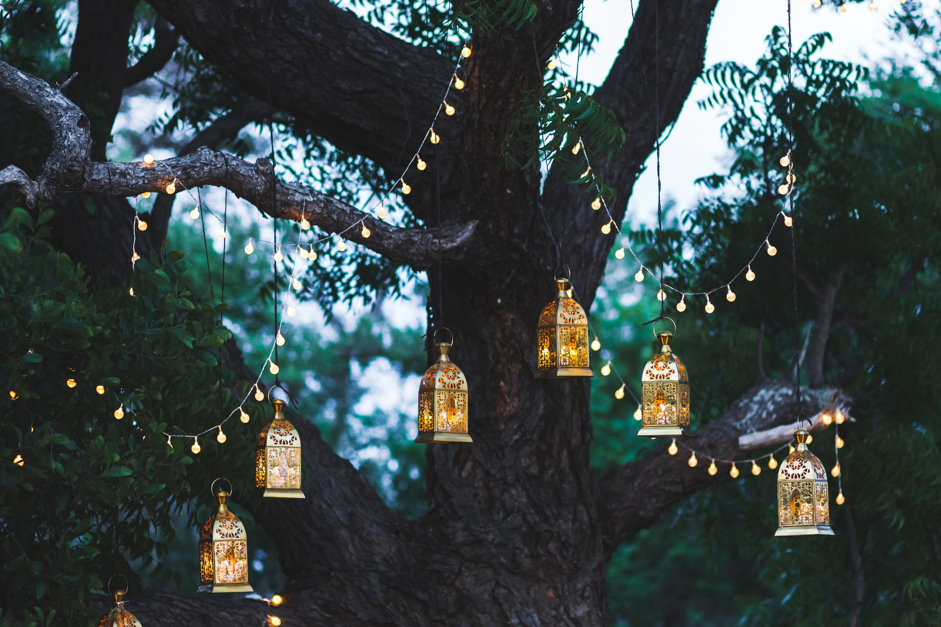 How to Choose the Perfect Lighting for Your Outdoor Space 5