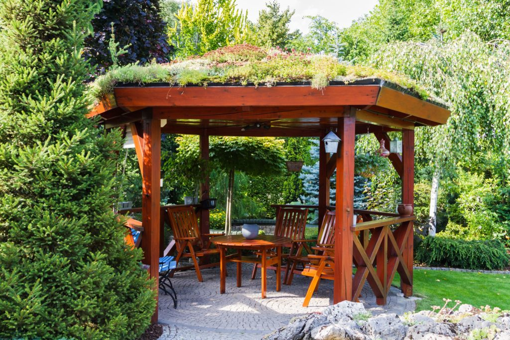 How to Create Privacy in Your Outdoor Space 3