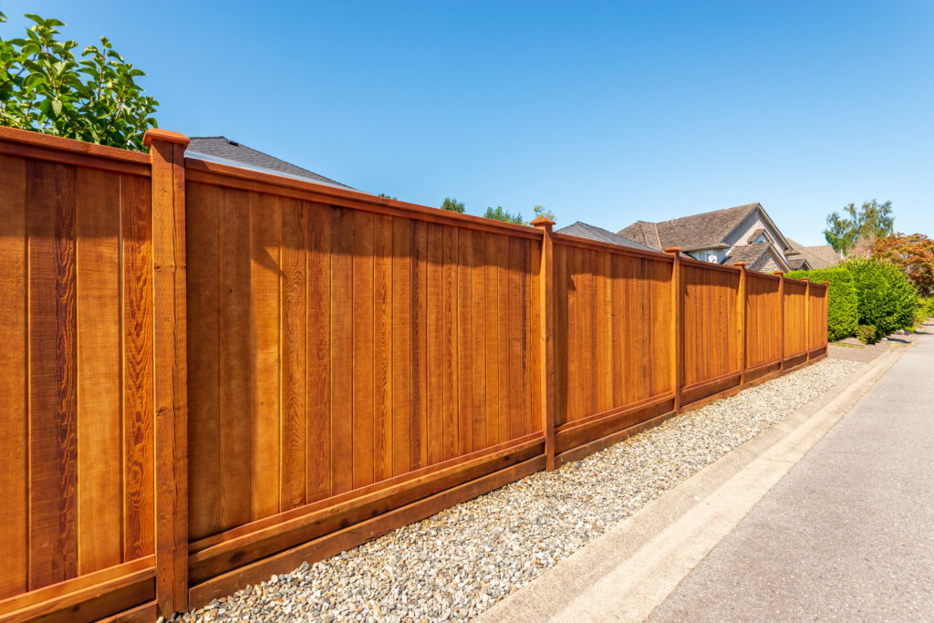 How to Create Privacy in Your Outdoor Space 1