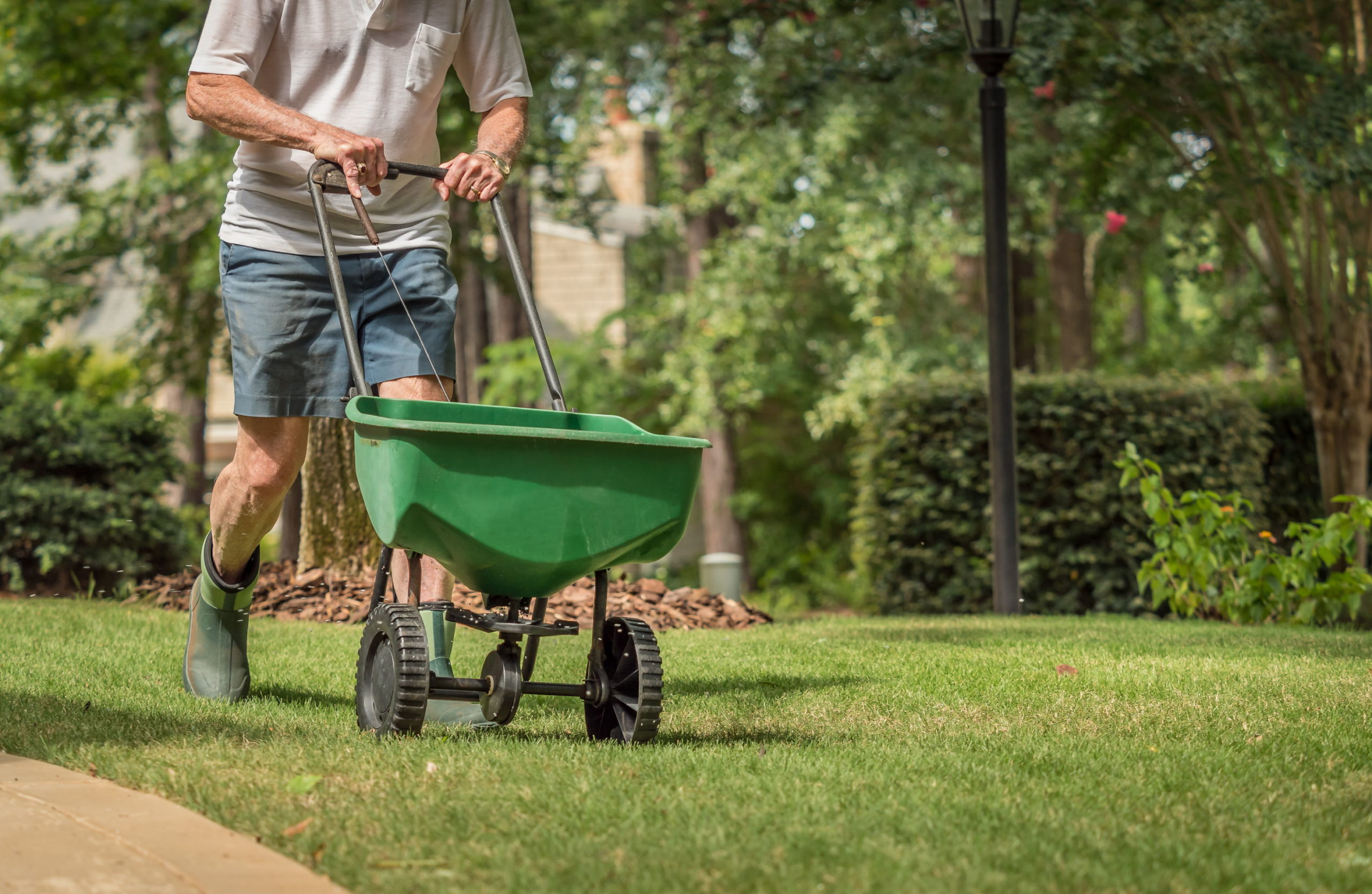 How to Prepare Your Landscape for Spring 2