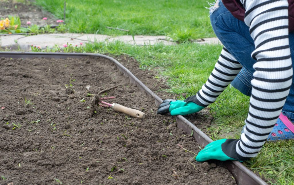 How to Prepare Your Landscape for Spring 4