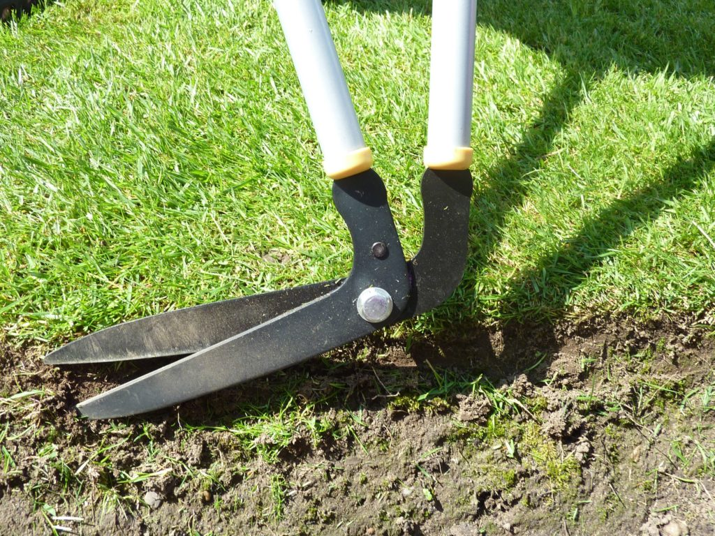 How to Prepare Your Landscape for Spring 3