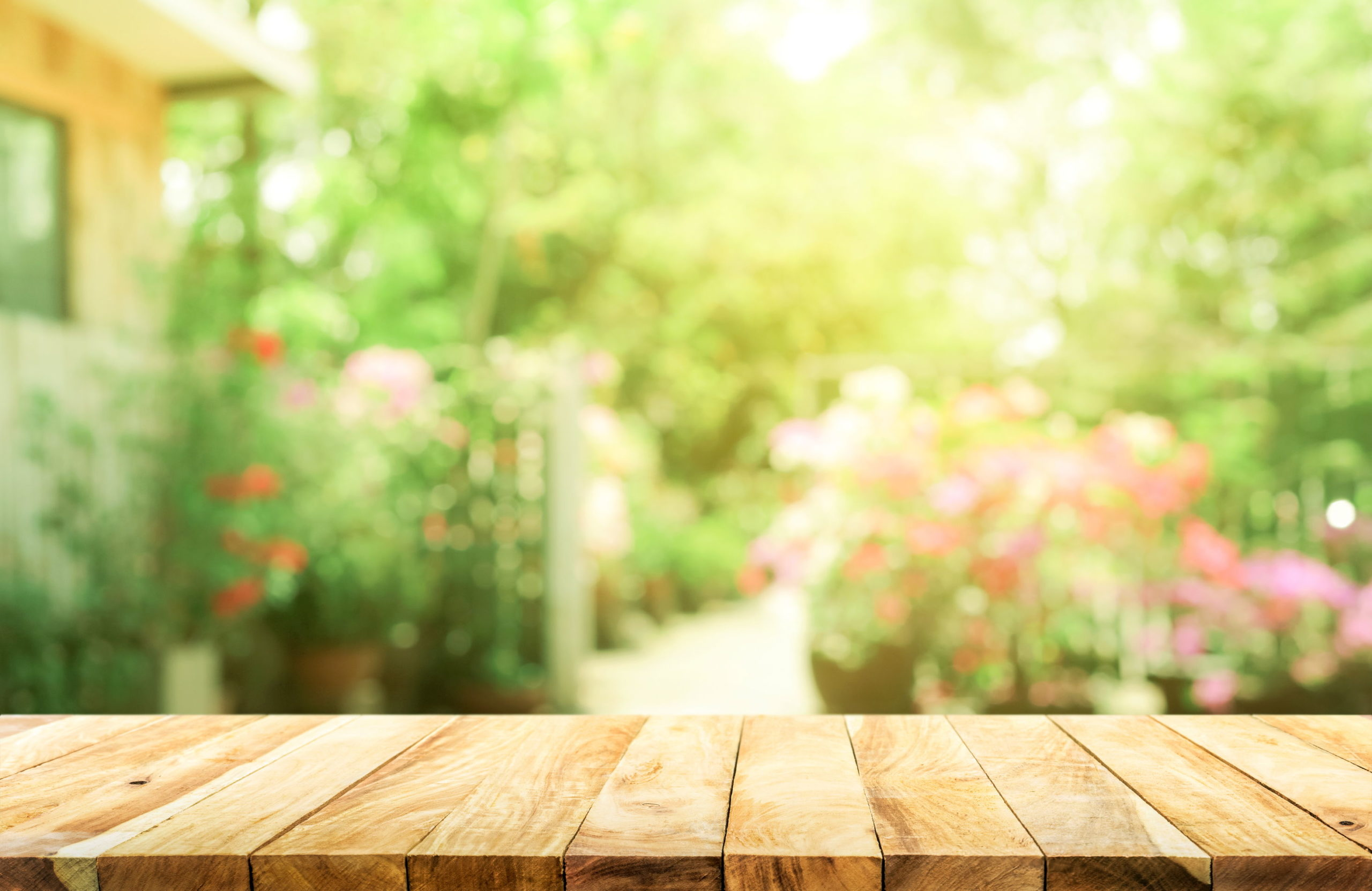 How to Design Your Landscape Around Natural Light 1