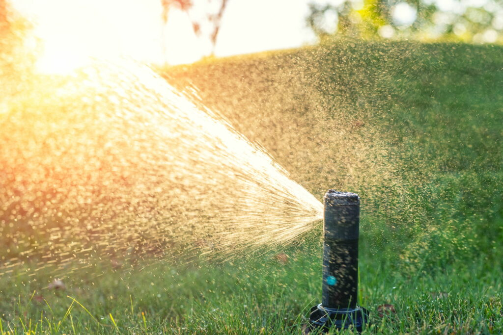 4 Reasons to Install an Irrigation System 2
