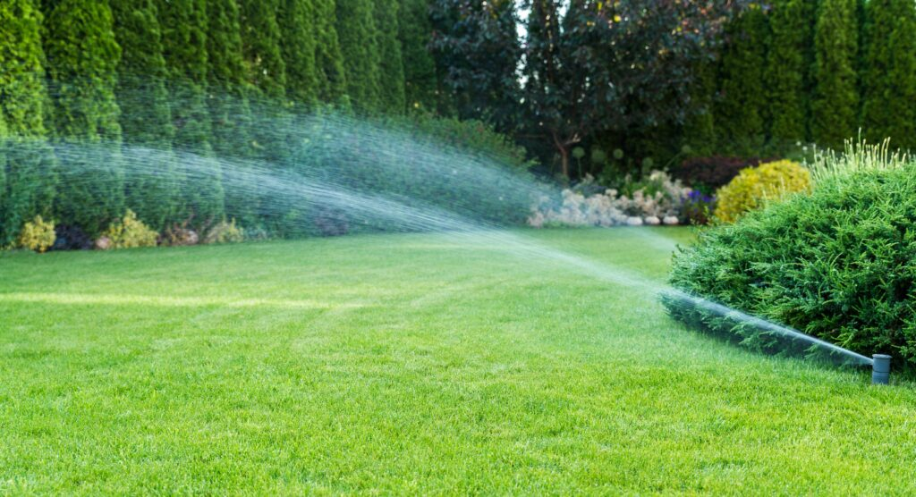 How Often Should I Mow the Lawn? 3